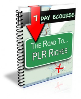 7 Day Ecourse : The Road To Plr Riches Personal Use Autoresponder Messages