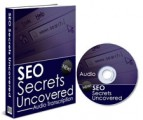 Seo Secrets Uncovered PLR Ebook With Audio