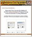 47 Cash Making Sites MRR Template