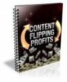 Content Flipping Profits Plr Ebook