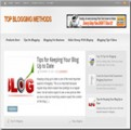 Top Blogging Methods Blog Personal Use Template With Video