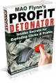 Profit Detonator Personal Use Ebook