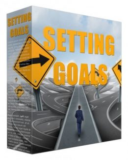 Setting Goals PLR Article