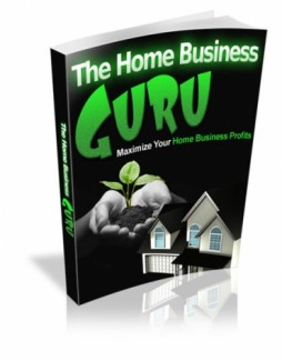 The Home Business Guru MRR Ebook