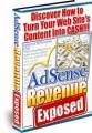 Adsense Revenue Exposed MRR Ebook