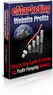 Emarketing Website Profits PLR Ebook