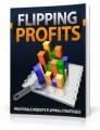Flipping Profits Mrr Ebook