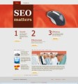 SEO Wordpress Theme Plr Template