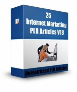 25 Internet Marketing V18 PLR Article