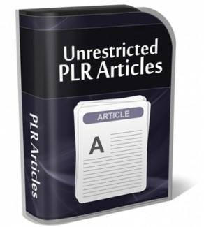 First Class PLR Article