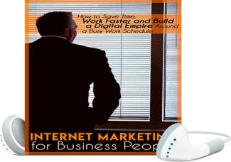 Internet Marketing For Business People MRR Ebook With Audio