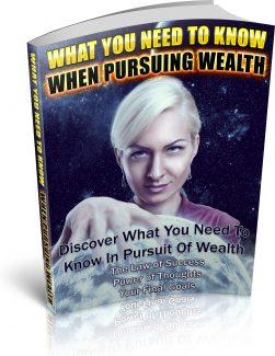 Pursuing Wealth PLR Ebook