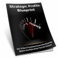 Strategic Profits Blueprint Personal Use Ebook