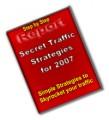 Secret Traffic Strategies PLR Ebook