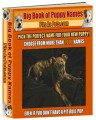 Big Book Of Puppy Names Resale Rights Ebook