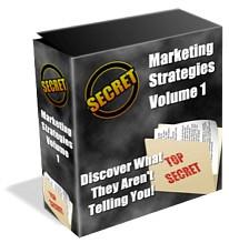 Marketing Strategies Plr Ebook