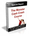 The Monster Cash Crash Course PLR Ebook