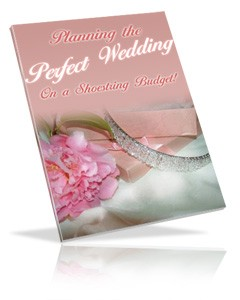 Planning The Perfect Wedding On A Shoestring Budget PLR Ebook