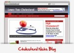 Cholesterol Niche Wordpress Theme Personal Use Template