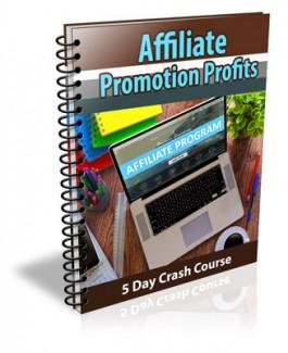Affiliate Promotion Profits Newsletter PLR Autoresponder Messages