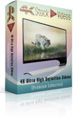 Animation 4k Uhd Stock Videos 5 MRR Video