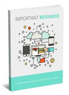 Important Business MRR Ebook