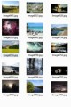 Trees And Nature Stock Images Resale Rights Graphic