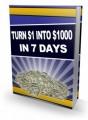 Turn 1 Into 1000 In 7 Days PLR Ebook