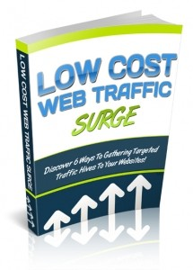 Low Cost Web Traffic Surge Plr Ebook