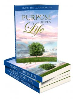Purpose Driven Life MRR Ebook