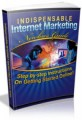 Indispensable Internet Marketing Newbies Guide Mrr Ebook