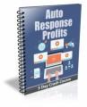 Auto Response Profits PLR Autoresponder Messages