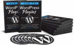 How To WordPress Plugins Upgrade PLR Video With Audio