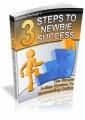 3 Steps To Newbies Success Plr Ebook
