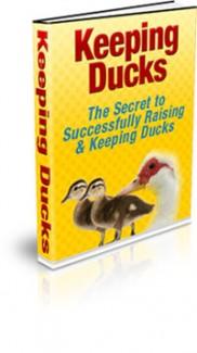 Keeping Ducks MRR Ebook