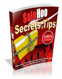 Salehoo Secrets And Tips Mrr Ebook