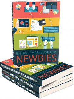Internet Marketing For Newbies MRR Ebook