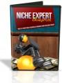 Niche Expert Blueprint MRR Video