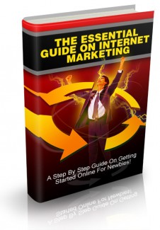 The Essential Guide On Internet Marketing MRR Ebook