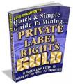 Mining Plr Gold MRR Ebook