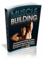 Muscle Building Plr Ebook
