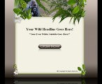 Wildlife Template & WP Theme 1 Mrr Template