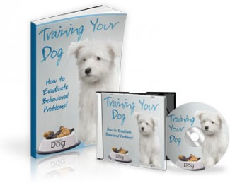 Training Your Dog Mrr Ebook With Audio