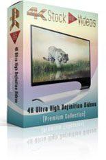Animation 4k Uhd Stock Videos 3 MRR Video