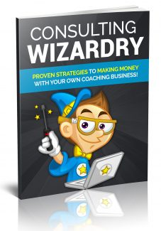 Consulting Wizardy PLR Ebook