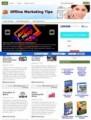 Offline Marketing Tips Niche Blog PLR Template