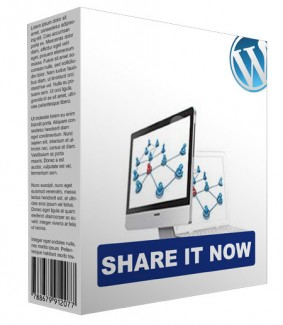 Share It Now WordPress Plugin Personal Use Software
